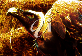 Royalty Free Photo of an Illustration of a Flaming Vulture