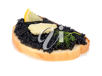 sandwich with black caviar isolated on white background