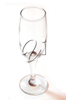 champagne glass clear isolated on white