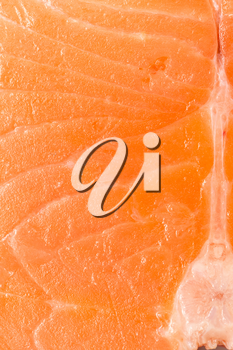 red meat salmon as a background