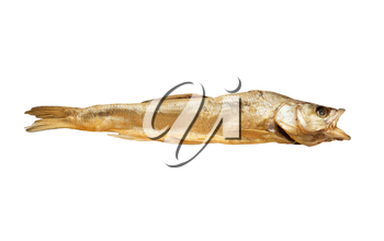smoked fish on a white background