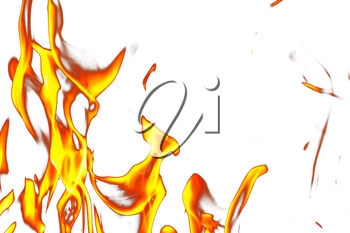 Fire flames on a white background