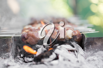 barbecue on the grill