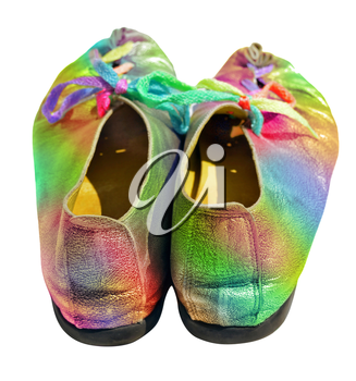 Colorful ladies shoes with multicolored shoelaces