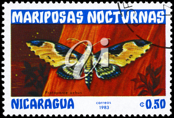 NICARAGUA - CIRCA 1983: A Stamp printed in NICARAGUA shows image of a Moth with the inscription Protoparce ochus from the series Nocturnal Moths, circa 1983