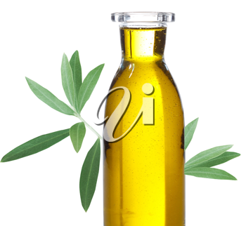 Royalty Free Photo of a Bottle of Olive Oil