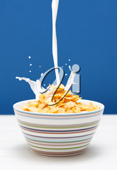 Royalty Free Photo of a Bowl of Cornflakes