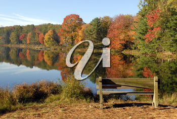 Royalty Free Photo of an Empty Bench at a New Jersey Lake