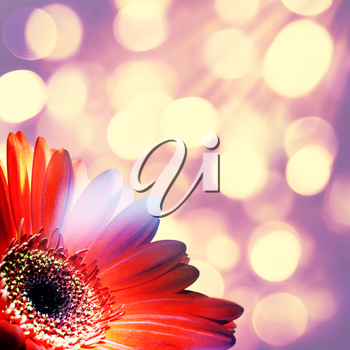 Abstract art backgrounds with beauty bokeh for your design