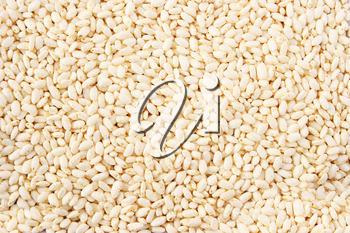 Royalty Free Photo of Puffed Rice