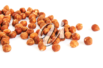 Royalty Free Photo of Hazelnuts
