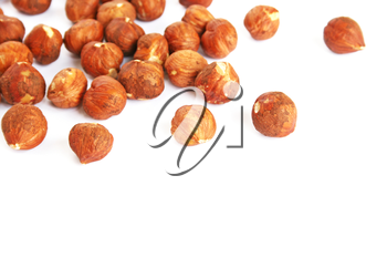 Royalty Free Photo of Hazeluts