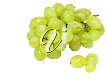 Branch of green grapes . Isolated over white