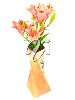 Pink liliesin vase on white background. Isolated over white
