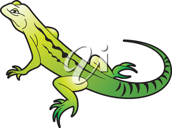 Royalty Free Clipart Image of a Chameleon