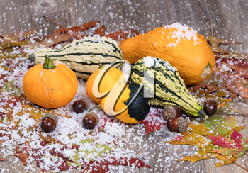Close up view of seasonal gourds with autumn leaves, acorns and snow on rustic wooden boards.