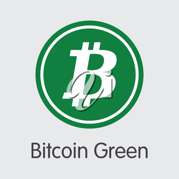 Bitcoin Green. Cryptocurrency. BITG Icon Isolated on Grey Background. Stock Vector Web Icon.