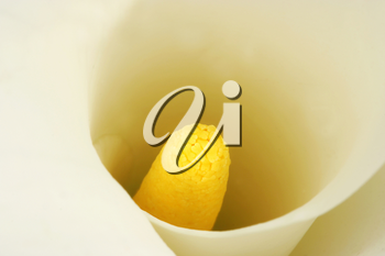 Royalty Free Photo of a Soft Focus Closeup on a Calla Lilly