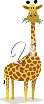 Royalty Free Clipart Image of a Giraffe Eating Grass