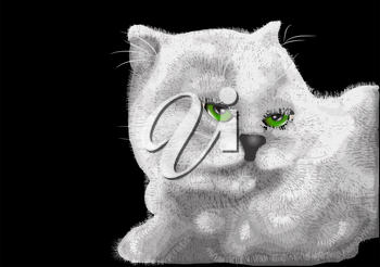 Royalty Free Clipart Image of a Kitten With Green Eyes on a Black Background