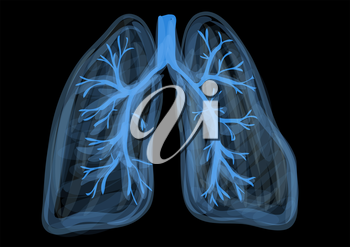 lungs. blue abstract respiratory organ on black background