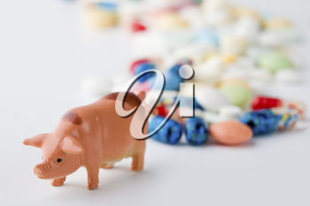 Photo of a toy pig symbolizing new virus of swine flu with colorful pills behind