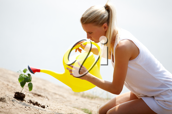 Image of careful female watering green sprout outside