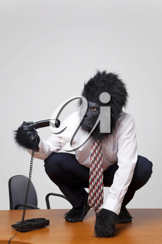 Abstract image of a gorilla in business attire sat on a desk trying to work out how to use the phone.