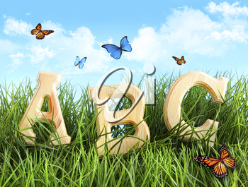 Royalty Free Photo of ABC Letters in a Field With Butterflies