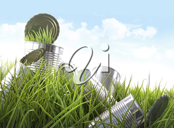 Royalty Free Photo of Empty Tin Cans in the Grass