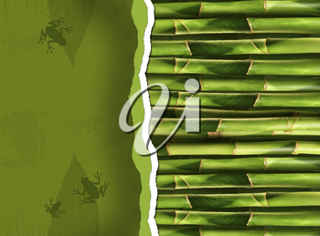 Royalty Free Photo of a Bamboo Stalk Background