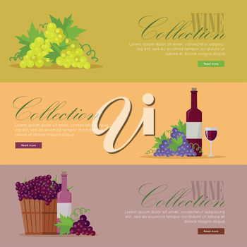 Set of fliers for elite wine collections. For labels, tags, tallies, posters, banners of check vintage wines. Logo icon symbol. Winemaking concept. Part of series of viniculture production. Vector