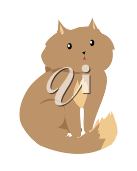 Cat isolated on white. Domestic cat, feral cat, house cat is a small, typically furry, carnivorous mammal. Sticker for children. Fluffy little brown kitten. Vector design illustration in flat style.