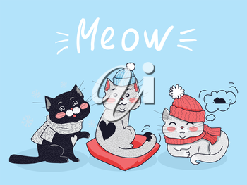 Funny cats vector concept. Flat Design. Three cute black and grey cats in scarfs and warm hats sitting, lying and dreaming about mouse on blue background with meow text. Winter clothes for pets