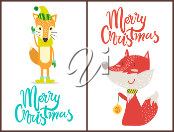 Merry Christmas, images of fox wearing hat and gloves that match together, another one is playing with toy, banners and headlines vector illustration