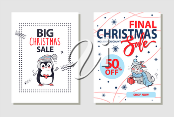 Final Christmas sale and 50 off, shop now and holiday discount, letterings on banner with penguin in sweater and hare with gift vector illustration