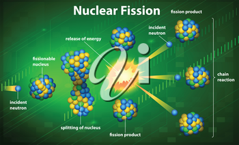 Illustration of a nuclear fission
