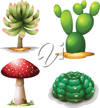 Illustration of a mushroom and cacti on a white background