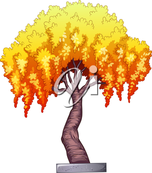 A single plant on a white background
