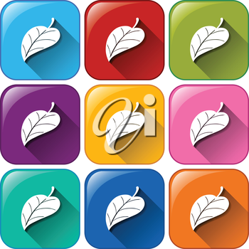 Illustration of the leaf icons on a white background