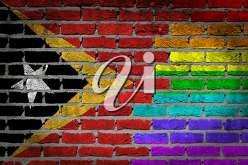 Dark brick wall texture - coutry flag and rainbow flag painted on wall - East Timor