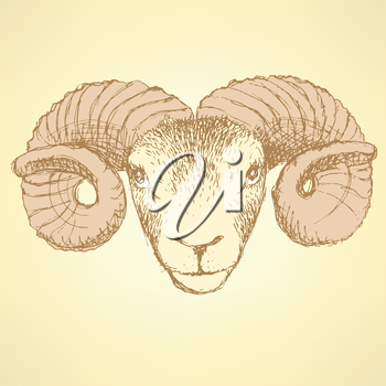 Sketch New Year ram in vintage style, background