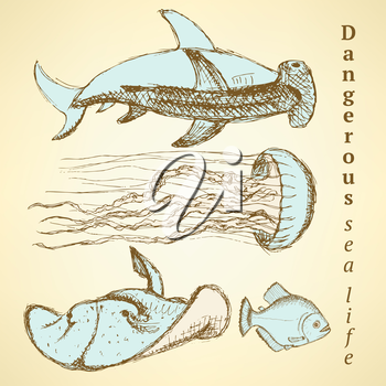 Sketch sea creatures in vintage style, vector