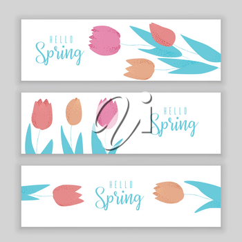Tulip pink, red and orange spring vector design, colorful concept