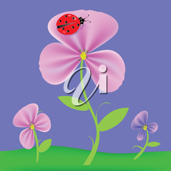 colorful illustration with flowers  for your design