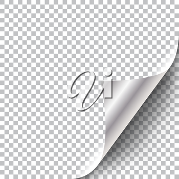 Curly Page Corner. Realistic illustration with transparent shadow. Ready to apply to your design. Graphic element for documents, templates, posters, flyers.