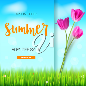 Summer sale banner. Stylish advertisement text poster on blue summer sky backdrop with white clouds, green, lush grass, daisies and ladybugs. Template mock-up for online shopping, advertising actions.
