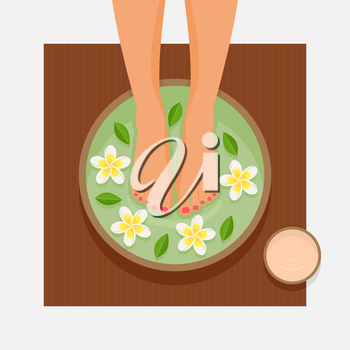 Spa foot therapy. Women's feet in bowl with flowers and leaves. Vector illustration