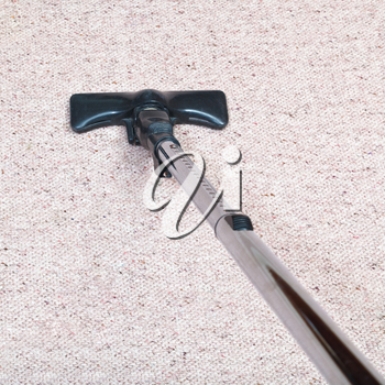 carpeting cleaning with a hoover at home