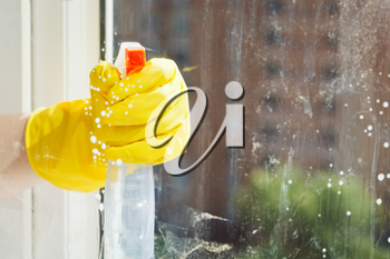 cleaning window from spray glass cleaner bottle